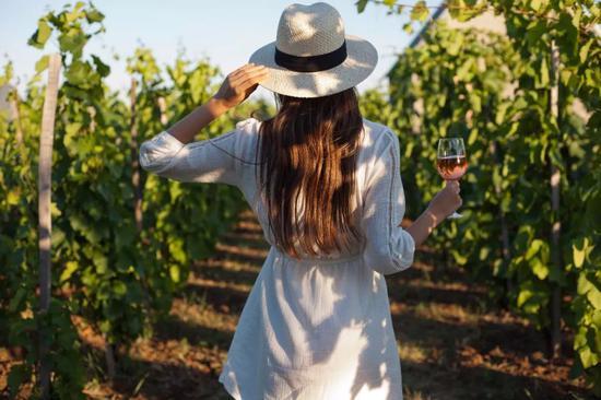 世界最佳酒庄TOP50 收下这份全球品酒地图