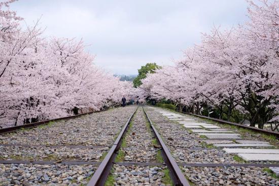 ?Tetsuji Sakakibara/Flickr