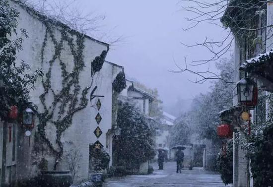 高去看雪落枝头银装素裹的峨眉山。