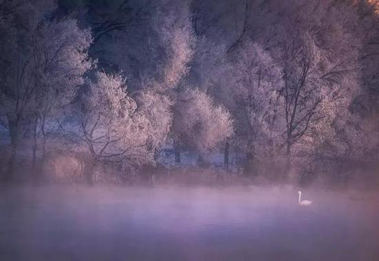 去看入时为冬,初临大雪的青海湖。
