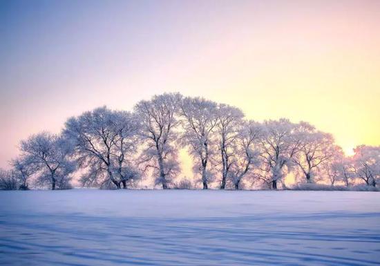 去看只有150多户人家的松岭雪村。