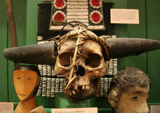 从Nagung村庄采取的头骨