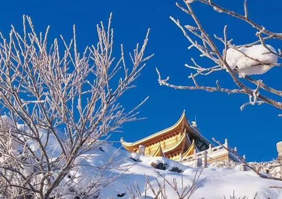 去看一米阳光下的巍巍苍山雪。