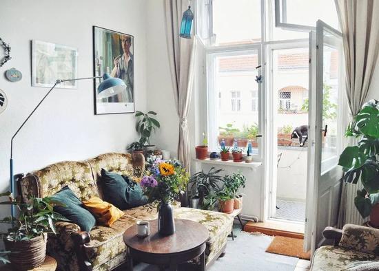 她把60㎡小公寓变身植物园 老家具也有新韵味