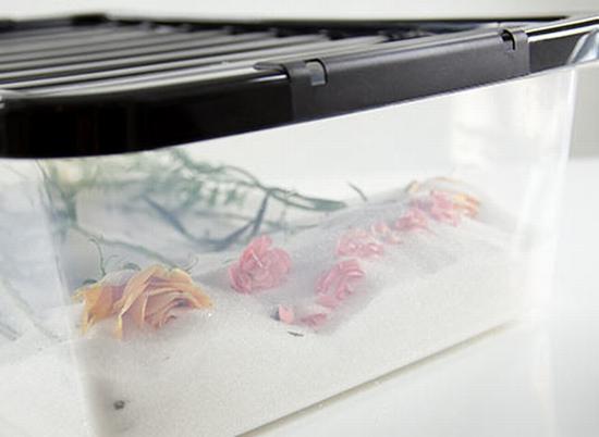 干燥剂吸干 图片源自www.flyingflowers.co