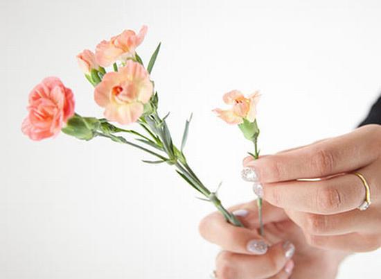 书本压花 图片源自www.flyingflowers.co