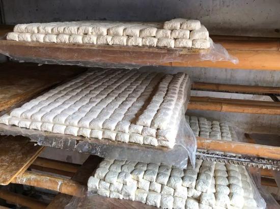 ▲ 发酵中的建水豆腐。图/图虫·创意