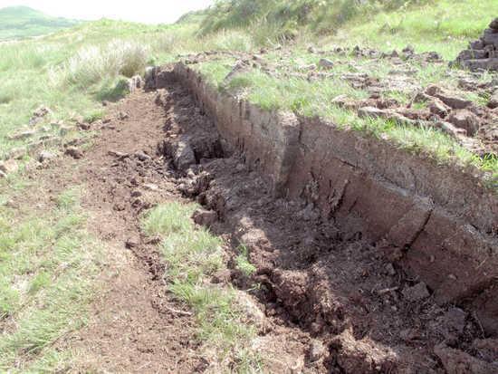 泥煤层(在阿贝附近)