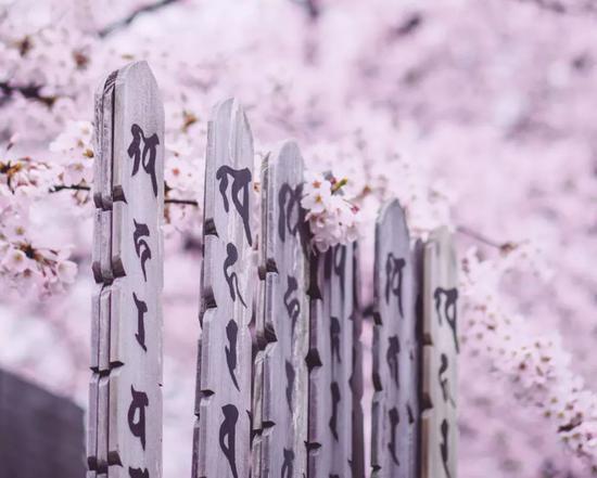 ?かがみ~/Flickr