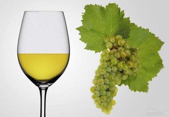 从A到Z,你需要了解的葡萄酒都在这里!(上)