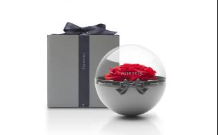 roseonly圣诞特别款·经典永续玫瑰花球