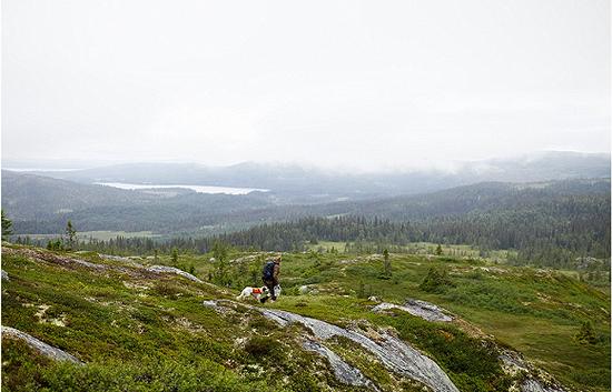 你需要从斯德哥尔摩驾车7小时或乘坐1个小时飞机才能到达这里 图片来源:Erik Olsson