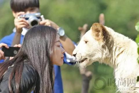 从小就爱动物的倪妮表示,希望有机会能当跟动物相关的形象大使,