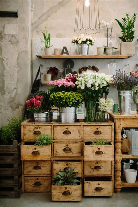 【第一步】选择喜欢的花卉类型