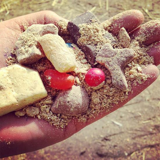 这个澳洲农场用巧克力培育出最顶级的牛肉