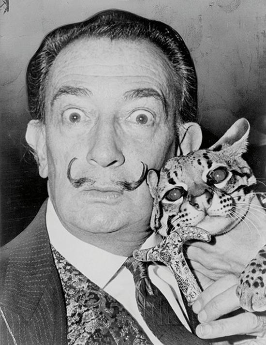 (萨尔瓦多·达利,Salvador Dalí)