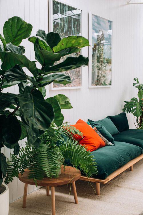 其实墨绿色的沙发比较适合于欧式奢华风格的家居设计当中.