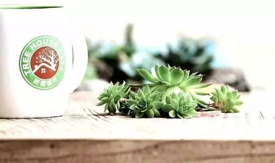 树屋咖啡选用哥伦比亚进口的咖啡豆,烘焙制作好后于两周内特送至店内,保证新鲜的口感。