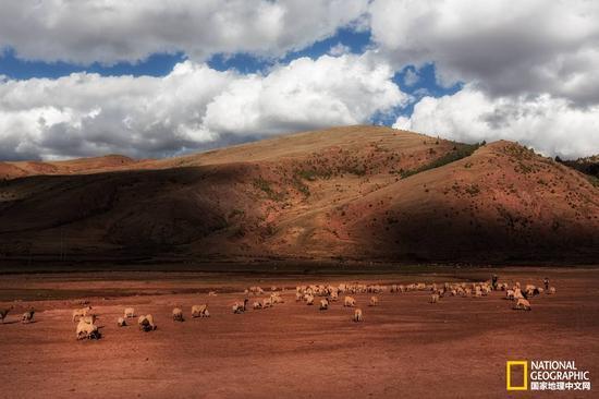 藏东红土地
