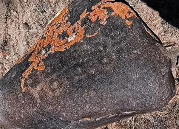 新发现!172幅古代岩画在内蒙古西部被发现