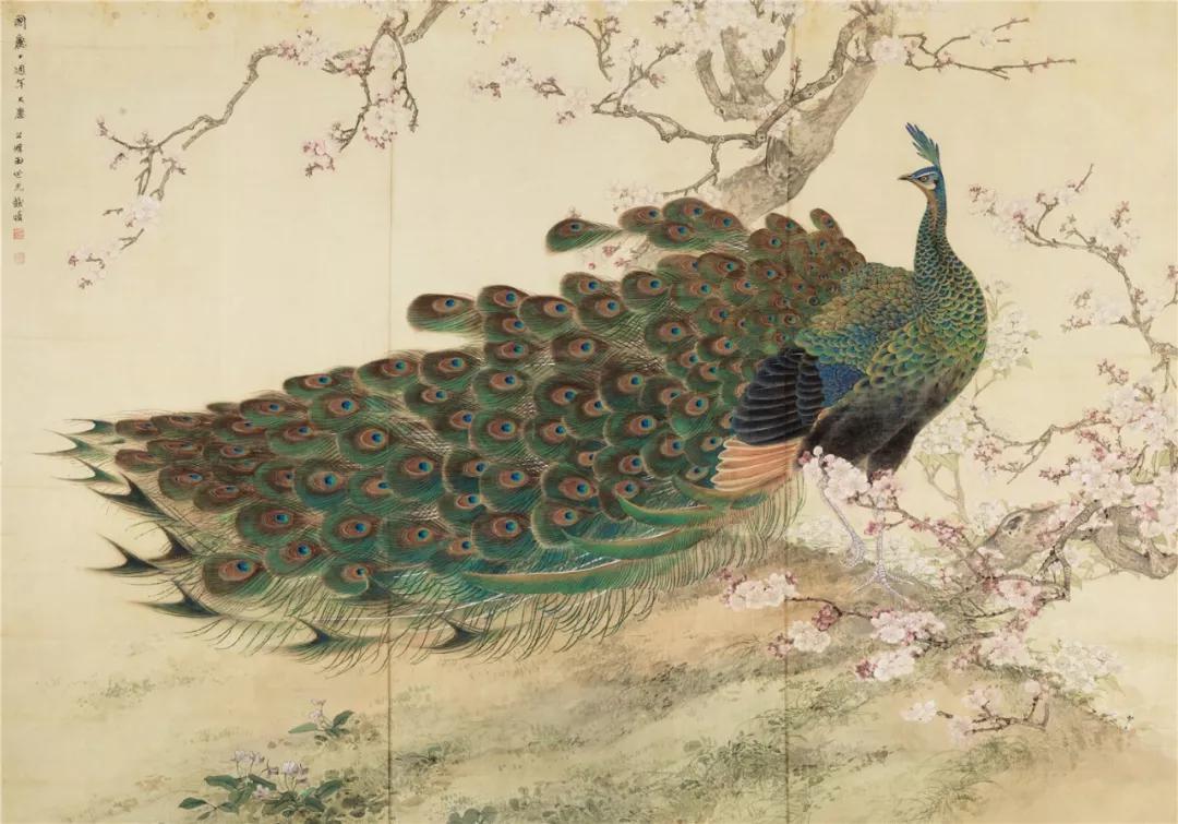 《孔雀桃花》 田世光 136×193 cm 绢本设色 1959年 北京画院藏