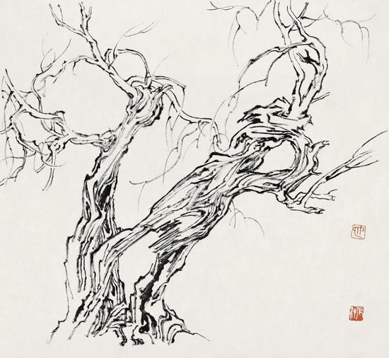 张仃《胡杨》 纸本焦墨 38厘米×35厘米 1981年