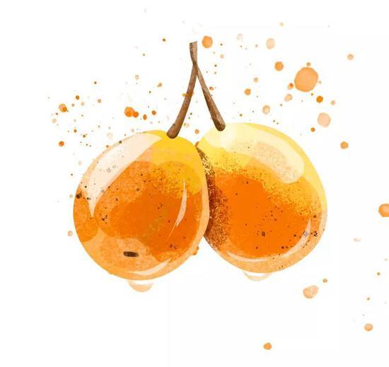 ▲ 大约是吃多了这几样水果,建水的女孩子们都很甜 从上至下依次为:软籽石榴、番石榴、水泡梨。插画/五月