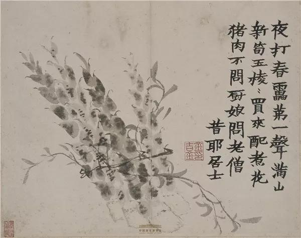 """清代·金农,《花卉蔬果册》之新笋,中国国家博物馆藏,曾于""""瑞彩平安——2020新春展""""中展出。"""