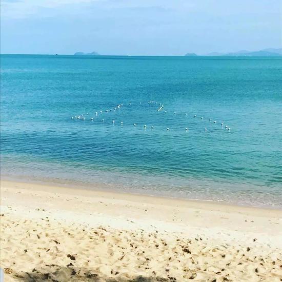 夏天就该去海岛浪 苏梅岛的旅行指南我都替你想好了!