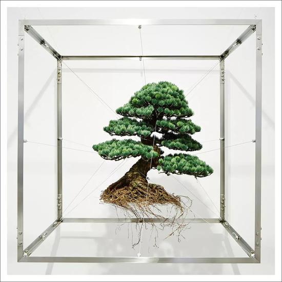 Pic From Makoto Azuma's installation