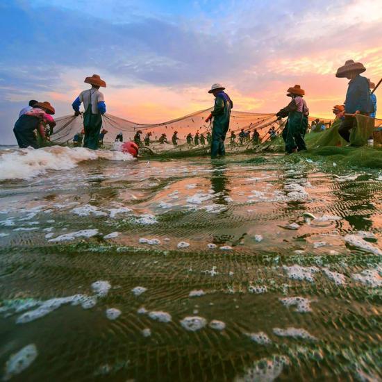 ▲湛江南三岛,渔民世代以拉网捕鱼为生。图/图虫·创意