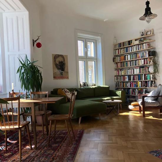 一个人住小公寓太美好 独享阳光植物和一整墙的书