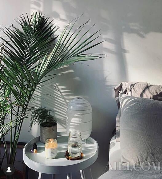 百元为家增添新鲜感 香薰蜡烛装饰实用两