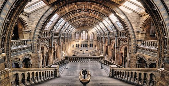 英国自然历史博物馆 资料图