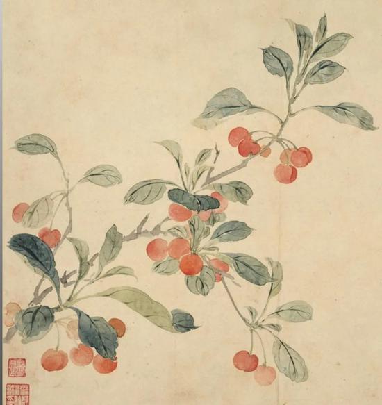 清 恽寿平 樱桃图册(局部)