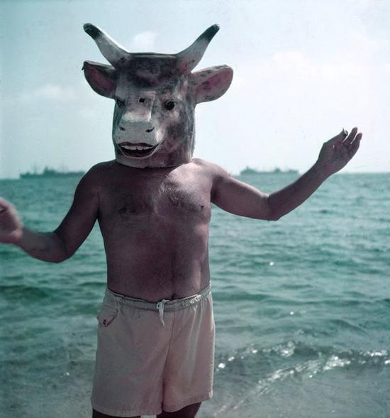 毕加索,1959