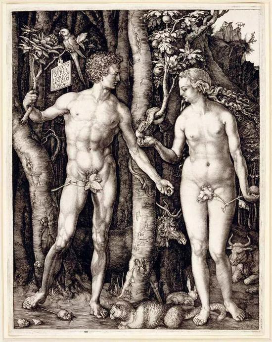 《亚当和夏娃》阿尔布雷特  丢勒