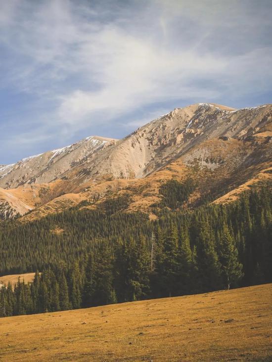 ▲赛里木湖背靠连绵的山丘和森林,像极了瑞士