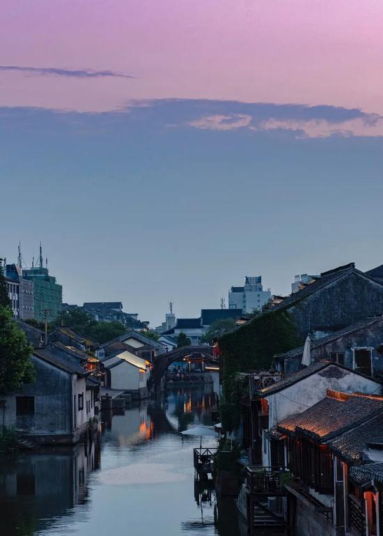 """这里被誉为""""浙江最会生活城市"""" 将迎来银杏海洋"""