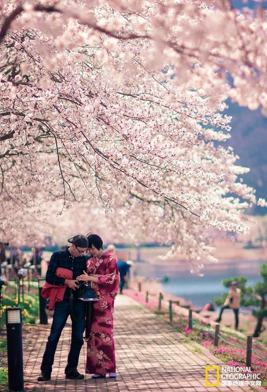 """在日语中,有一个词叫""""花见""""。"""