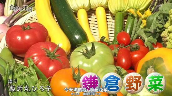 还会介绍一个地区的特定美食,如镰仓蔬菜等
