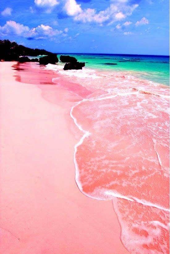 巴哈马粉红海滩 图片来源自Pinterest@Fantastic Travels