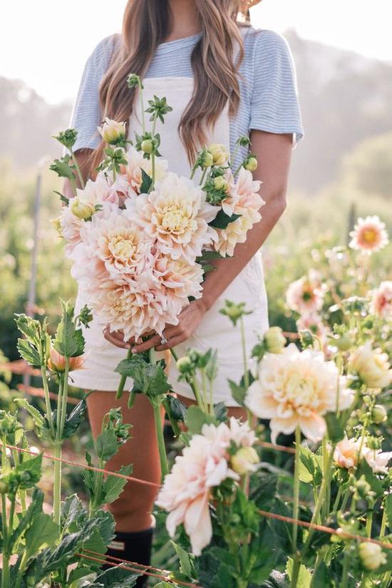 穿衣选择 图片来源自Pinterest@ Julia Engel