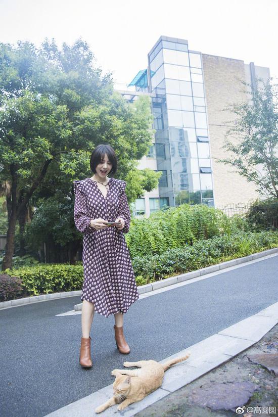 连衣裙:H&M