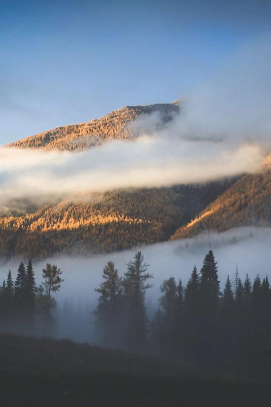 ▲晨雾之下,是藏起来的纳尼亚传奇
