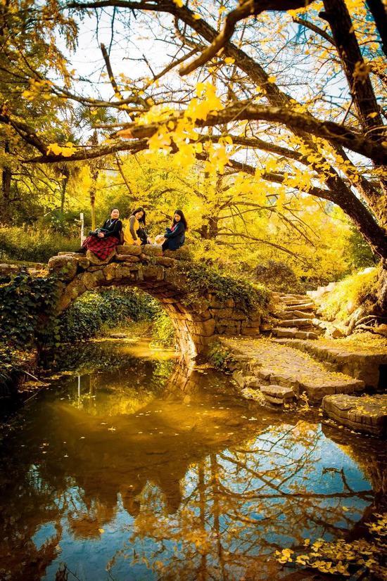 贵州的秋天有多美 去了知道
