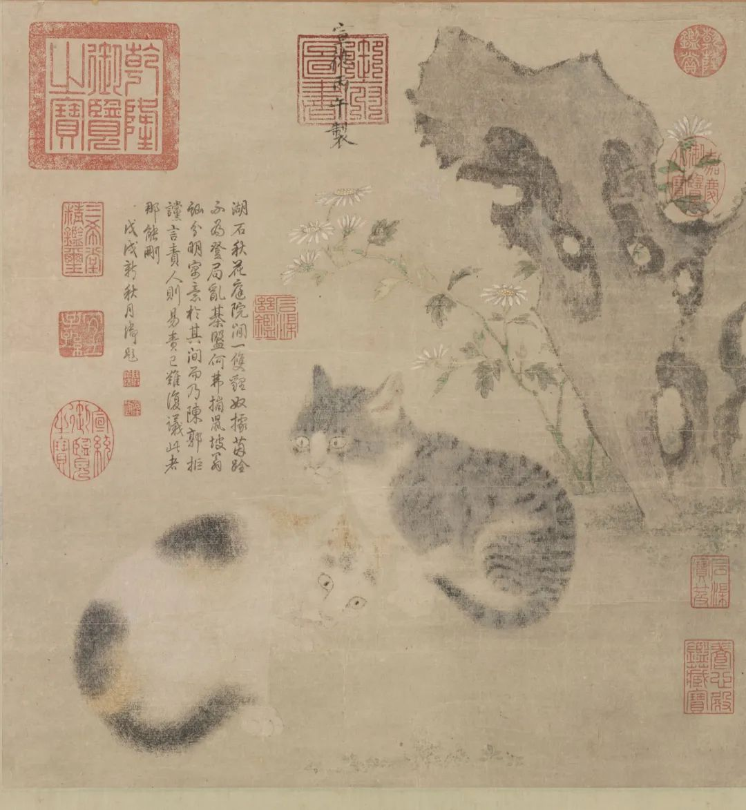 """[明]朱瞻基花下狸奴图(局部)纸本设色 41.5cm×39.3cm台北""""故宫博物院""""藏"""