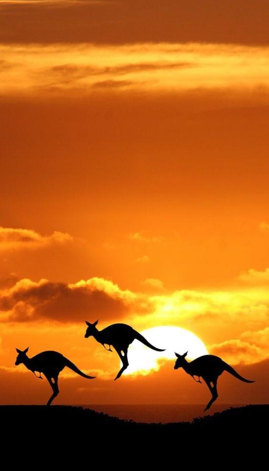 《老男孩》里比刘烨林依晨更吸睛的是澳洲美景
