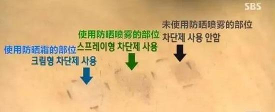 SBS 节目截图