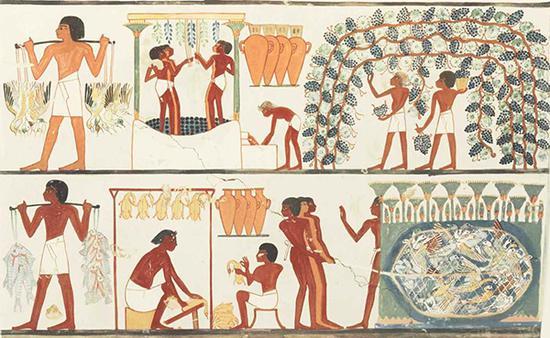记录有埃及人酿葡萄酒的壁画